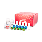 M-pluriBead® Mini Reagent Kit
