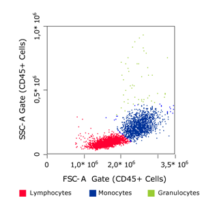 PBMC Spin Medium - Flow cytometry